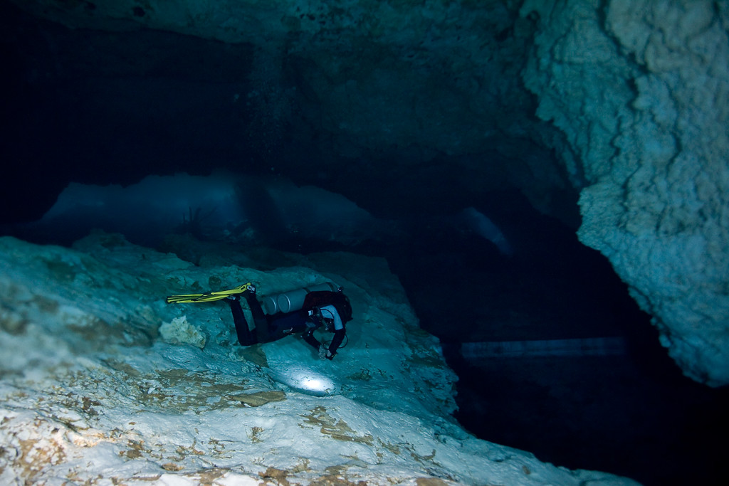 The divemaster hovers above the halocline, lit by his flashlight.