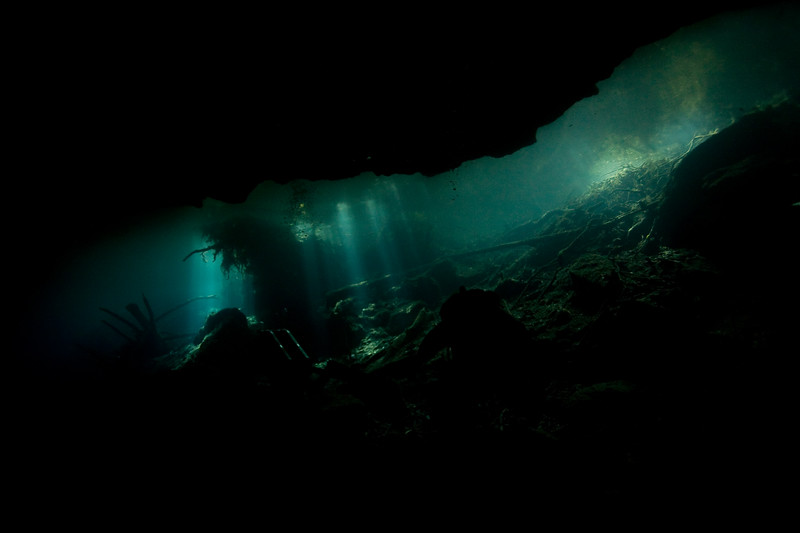 It was an overcast day and the sun came out only briefly, but shed some beautiful light rays into the cenote.