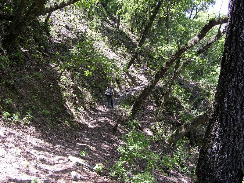 Hike from Las Adjuntas to Pozas del Chipitin