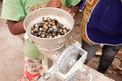 The blue corn kernels in the grinder. Learning how to make blue corn tortillas in from a street food vendor in Mexico.