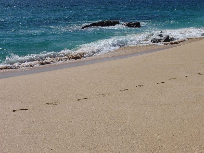 DSC00054 Surf and sand and footprints at a beach near Cabo San Lucas Mexico