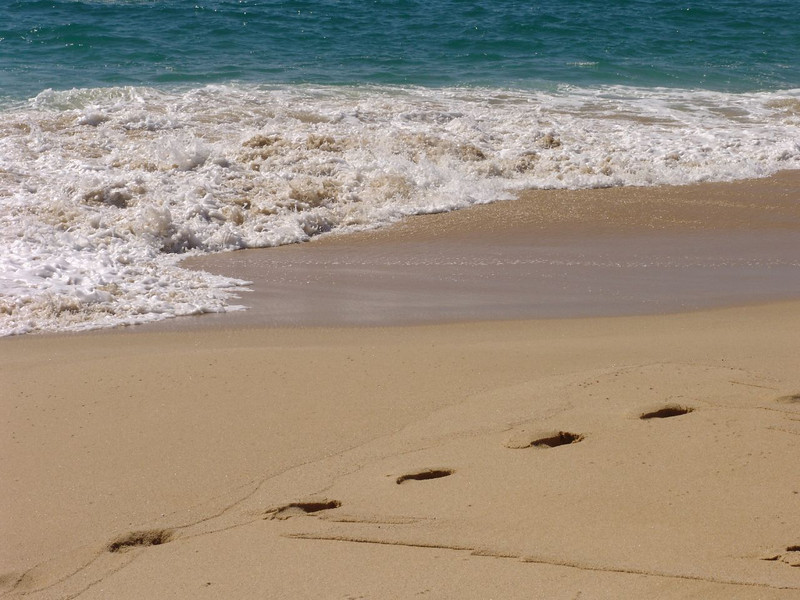 DSC00104 Surf and sand and footprints at a beach near Cabo San Lucas Mexico