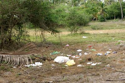 Picnic Garbage in Field by San Blas Beach