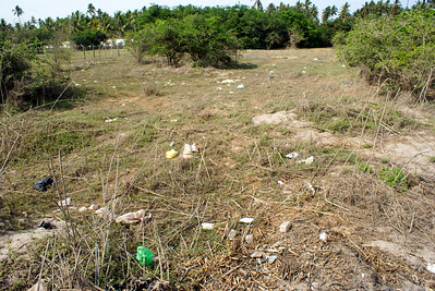 Litter Covers Field by San Blas Beach in Mexico