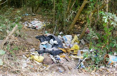 Roadside Garbage Dump, San Blas, Mexico