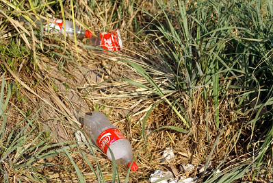 Coke Bottles Litter Amongst Grass, Mexico