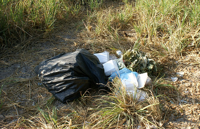 Picnic Litter in San Blas, Mexico
