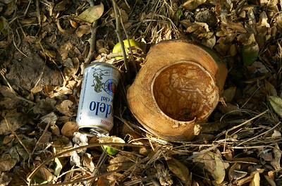 Coconut Husk with Empty Beer Can