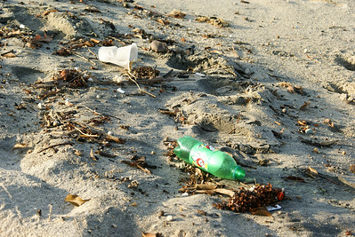 Soda Bottle and Plastic Cup on Beach
