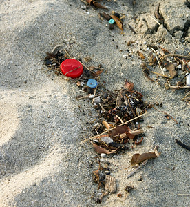 Litter Fragments on Beach