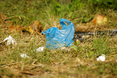 Blue Plastic Bag Litter