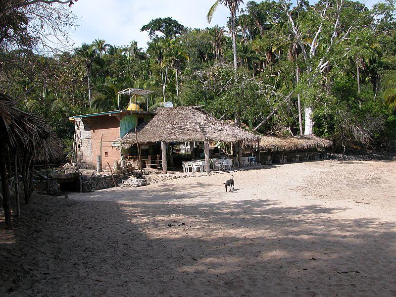 la jungla 2 - restaurante