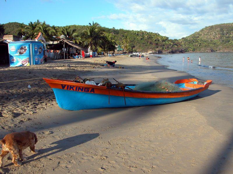 boats - Vikinga