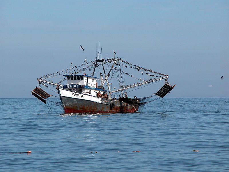 boats - shrimper Robalo I