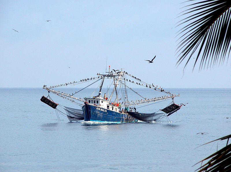 boats - shrimper Don Balta 2