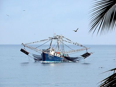 boats - shrimper Don Balta 2