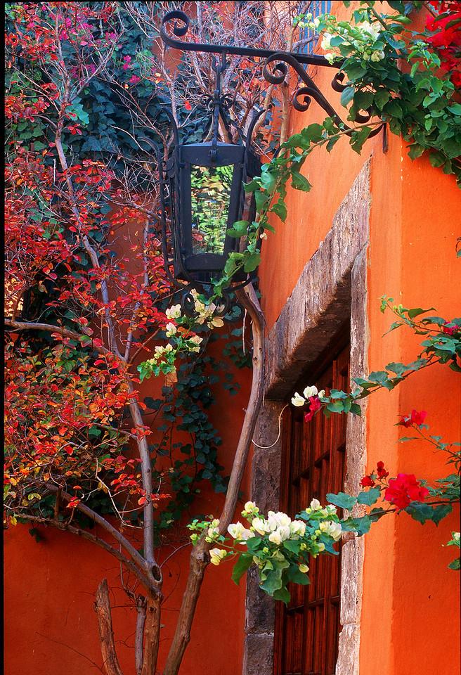 Lantern on Orange Wall
