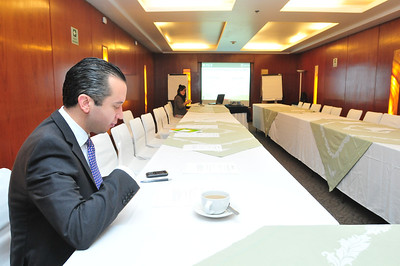 Mexico.Alliance Roundtables.2011-2012
