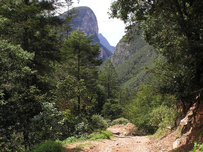 Road between Laguna de Sanchez and Casillas