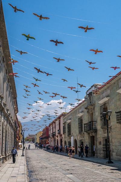Oaxaca's alcalá walking street