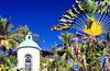 Tropical vegetation and Spanish architecture in Puerto Vallarta, Mexico.