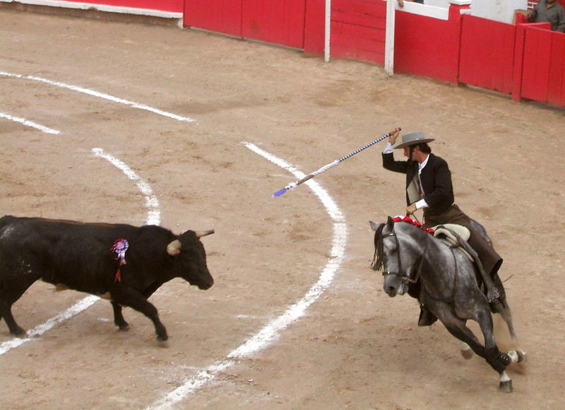 Bullfight on Horseback