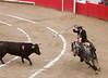 Bullfight on Horseback