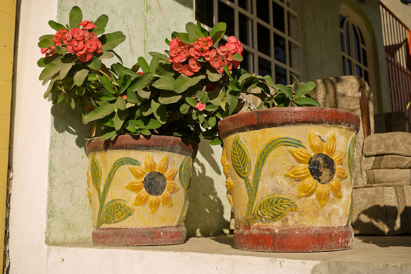 Flower posts in San Pancho, Mexico.
