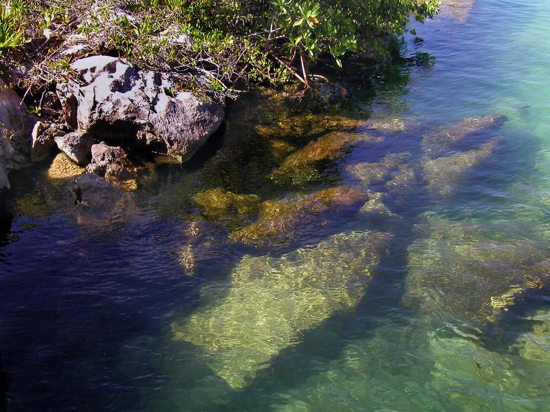 Yal-Ku Cenote