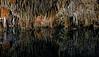 Underground Lake  (A Cenote)