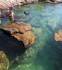 Yal-Ku Springs