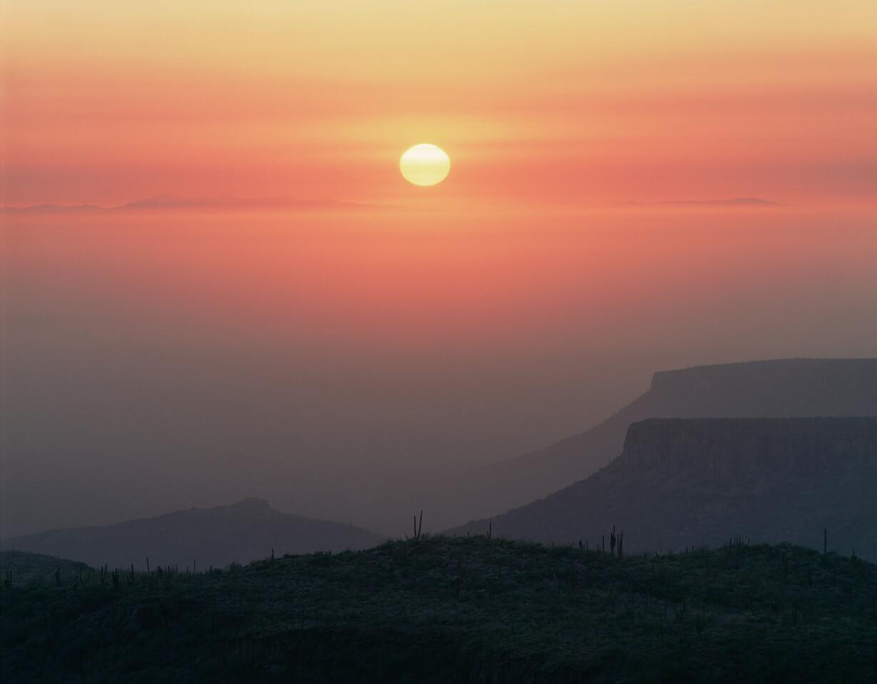 Baja Sur, Sierra, MEX/San Francisco. Mesas rising above the Vizcaino Desert with Pacific fog at sunset with Cardon cactus (Pachycereus pringlei).1088h   a