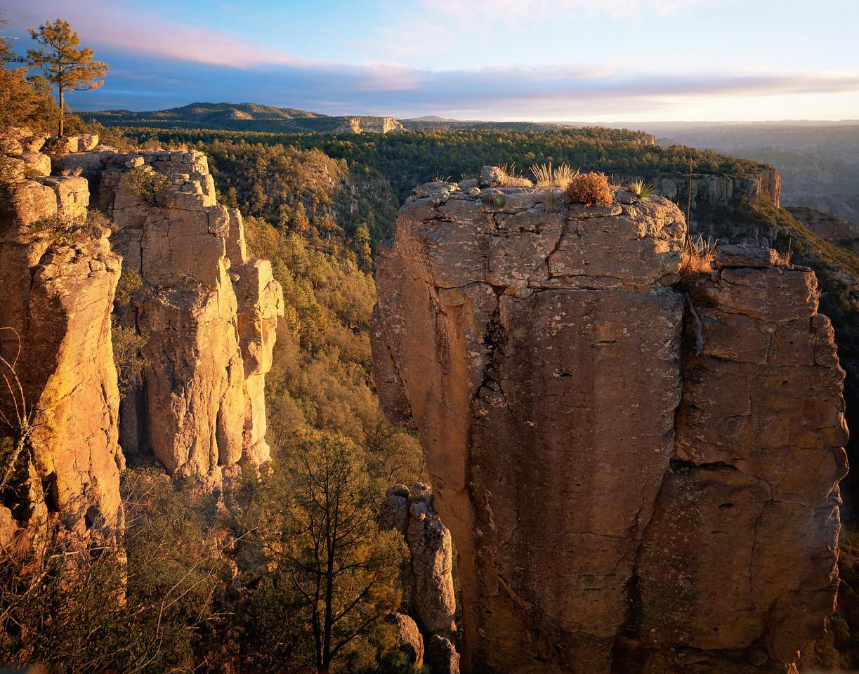 Barranca del Cobre National Park, MEX /  Dawn illuminating cliffs of Copper Canyon  near Divisadero, Chihuahua. 1103H2