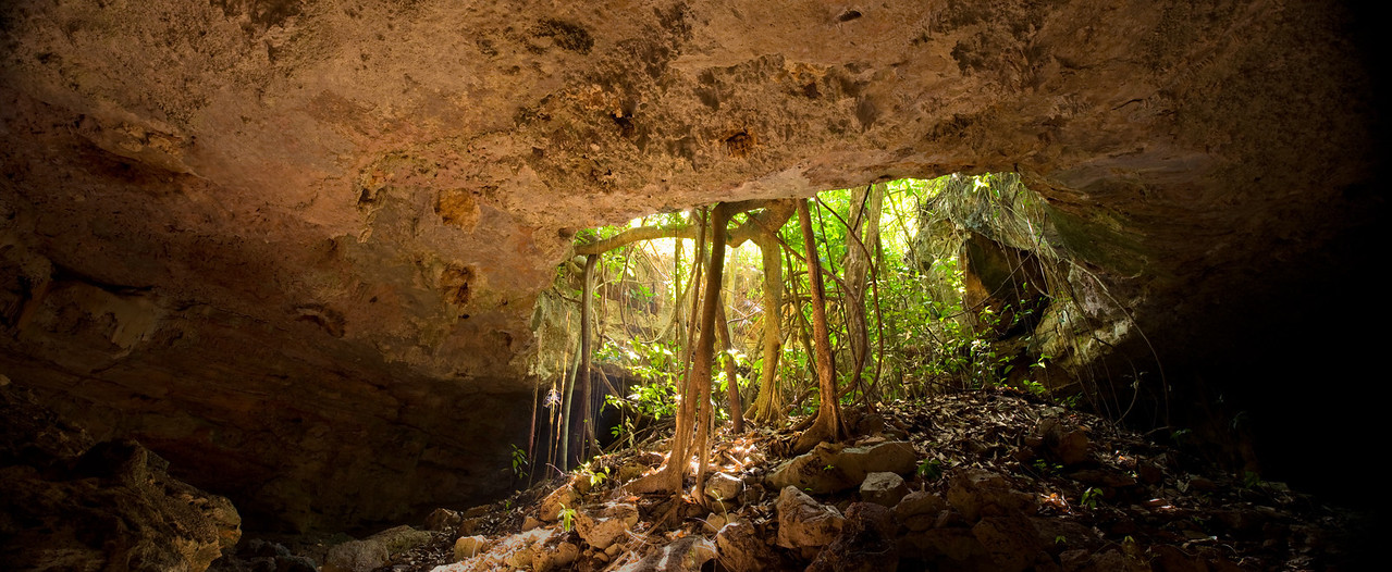 Cenote Oxpeejool, Yucatan, Mexico