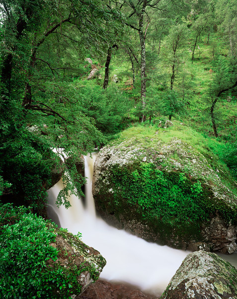 Barranca del Cobre, MEX/National Park, Cerocahui River falls in the Urique Canyon complex. 896V5
