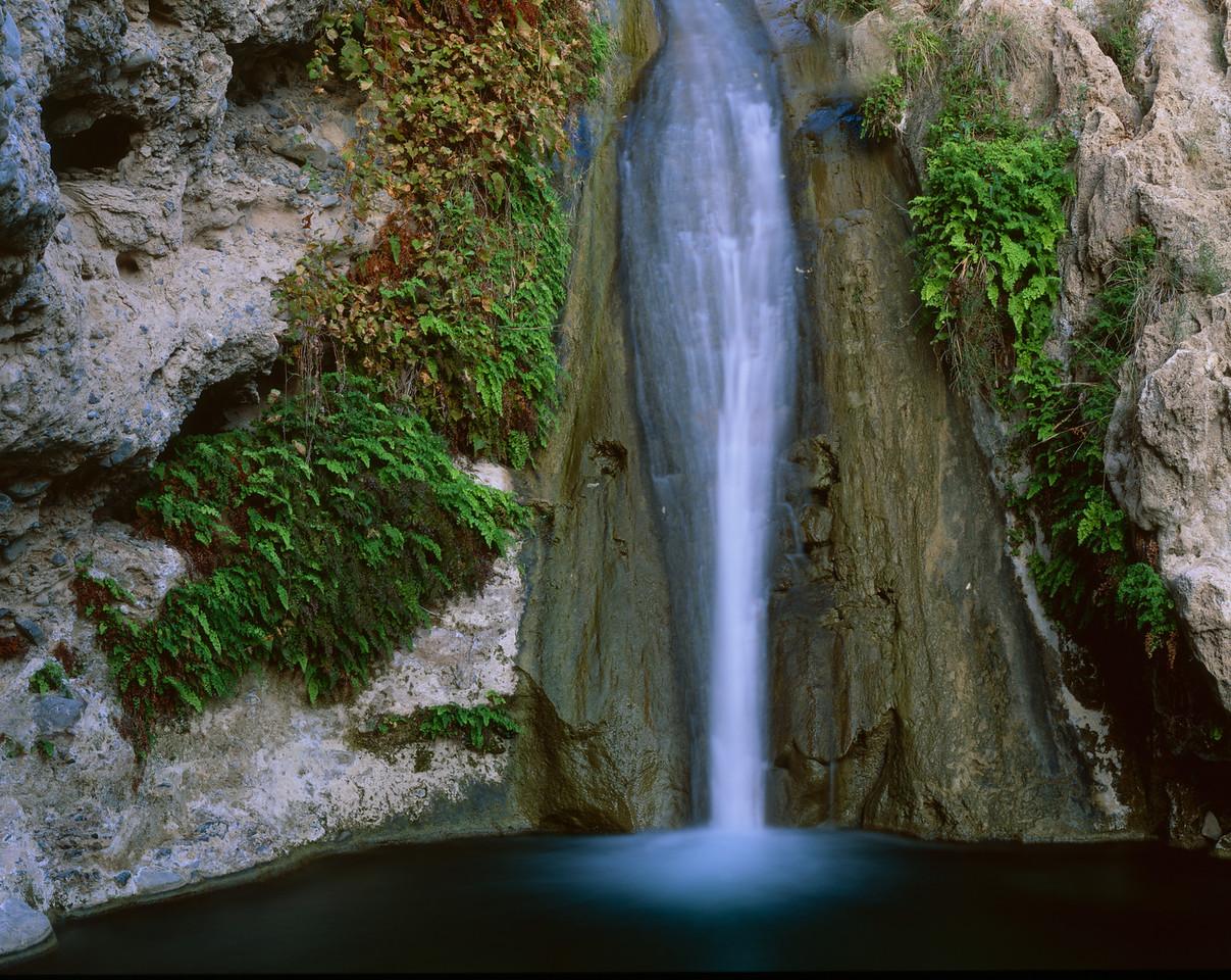 Canyon Santa Elena, Chihuahua, Mex /  Pilas Canyon waterfall in maidenhair fern grotto. Sierra Azul Mtns. Canyon of Santa Elena Flora and Fauna Protection Area.1005H4
