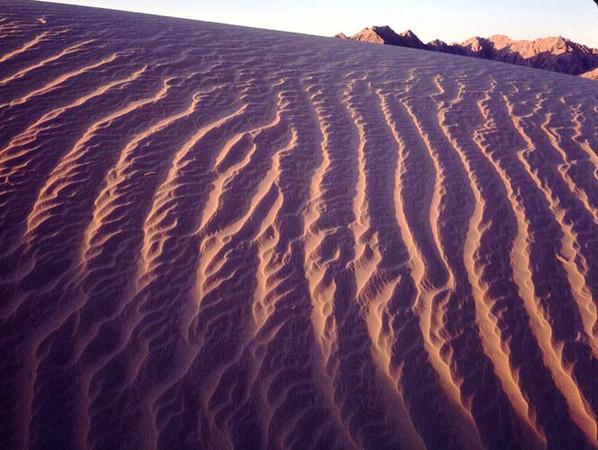Grand Desierto, Sierra, MEX/Enterrada buried in sand with beetle tracked dunes foregound.289h  xa