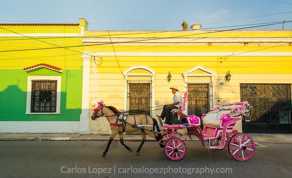 Calles de Merida, Pink Carriage