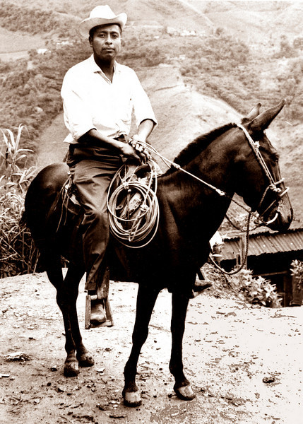 A man and his mule, Huautla, Oaxaca