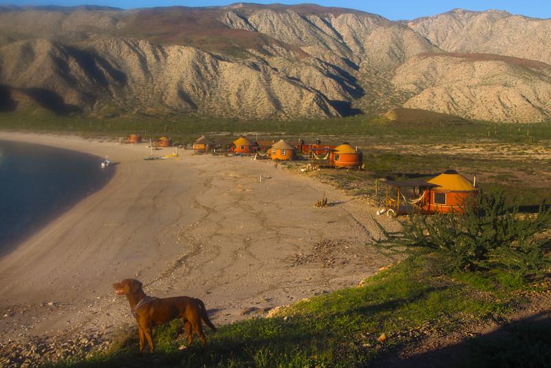Las Animas Eco Lodge, View on Yurts with Dog and Mountains