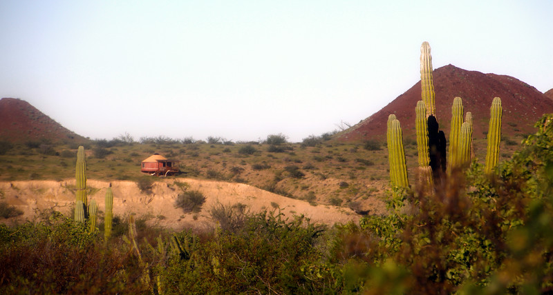Las Animas Wilderness Lodge, Yurt in Desert Landscape