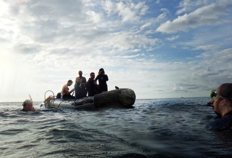 Galapagos, Snorkling, San Cristobal