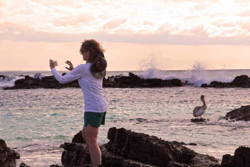 Galapagos Islands, Photographer & Pelican, Puerto Grande Beach, San Cristobal