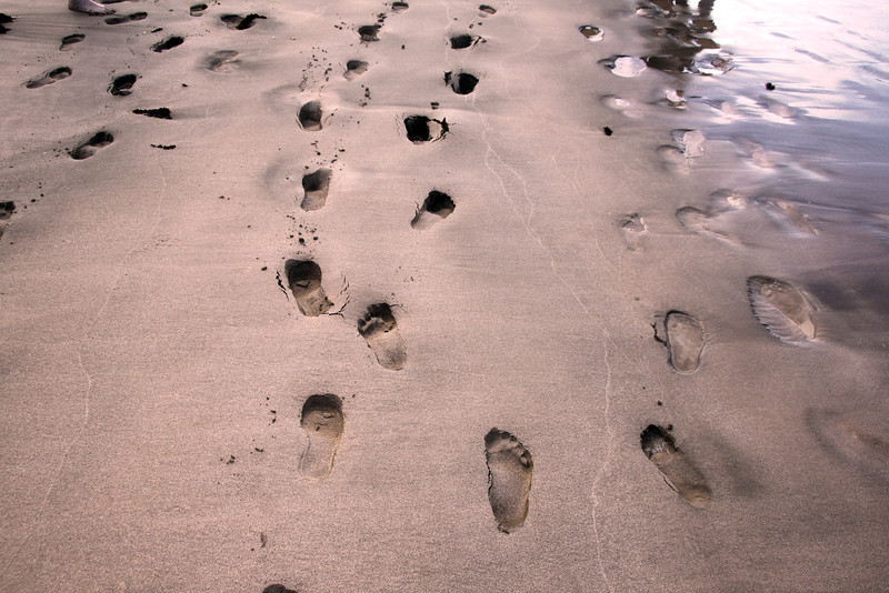 Galapagos Islands, Footprints in Sand, Floreana