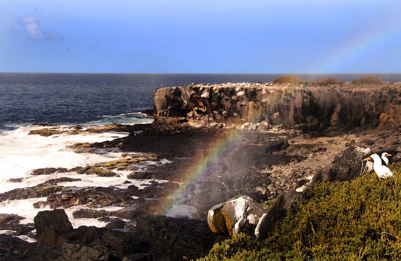 Galapagos Islands, Punta Suarez, Espanola Island