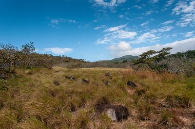 Landscape at Rincon Volcano National Park, Costa Rica