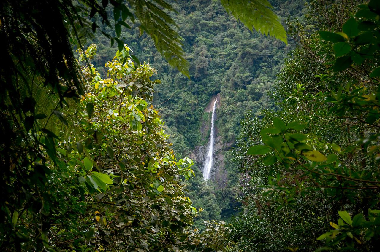 Waterfall in Tapanti National Park, Costa Rica