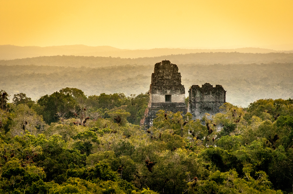 Temples Rising Out of the Forest in Tikal, Guatemala