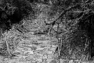 Ruins of Mayan stairs in Copan, Honduras