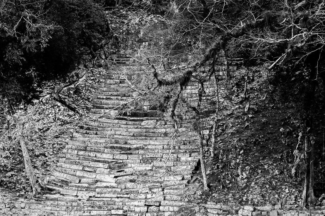 Ruins of Mayan stairs in Copan, Honduras